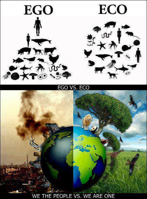 EGO vs ECO