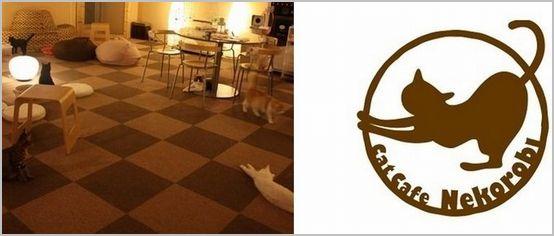 猫カフェ ねころび