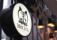 猫カフェ MoCHA(モカ) 渋谷店がオープン!! 営業時間や料金は?