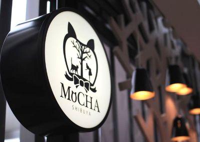 猫カフェ MoCHA(モカ) 渋谷店