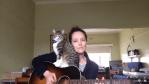 甘えんぼ子ネコ全開!飼い主のギター演奏を邪魔する猫に胸キュン