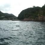 [小浜湾 筏釣り] 金丸渡船 若狭本郷の旅館・筏釣り・カセ釣り