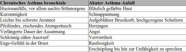 Übersicht chronisches Asthma und akuter Anfall