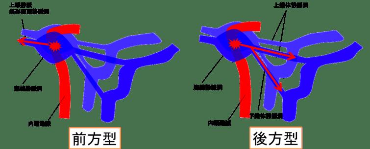 ccf-figure3