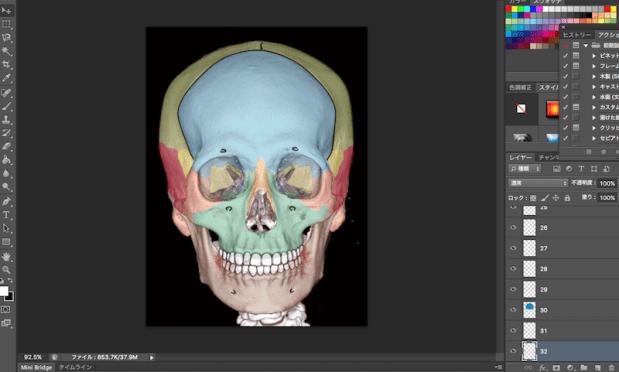 facial bone front