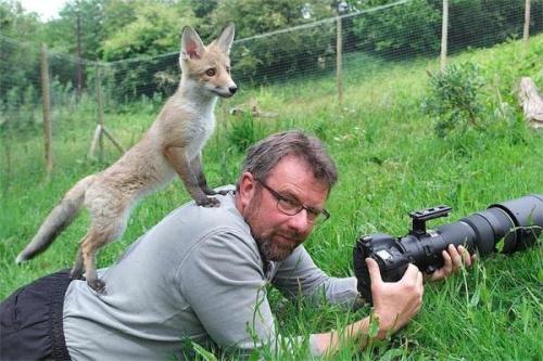 カメラマンと仲良くなってしまった動物達1