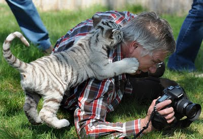 カメラマンと仲良くなってしまった動物達3