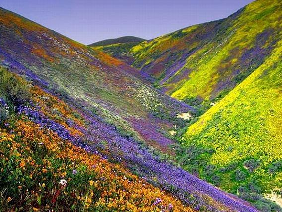 美しい自然2