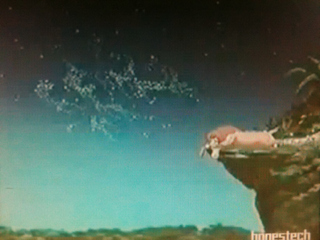 5b692041fcfa0e2a017fdc6f9d55a978 ディズニー映画「ライオンキング」に浮かび上がる卑猥な文字とは!?|ディズニー都市伝説