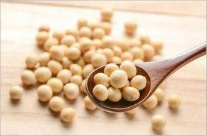 大豆のイソフラボン