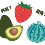 野菜と果物の違い