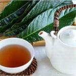 びわの葉茶の好転反応について! 効能や作り方は?