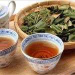 びわの葉茶の成分や効能、副作用について