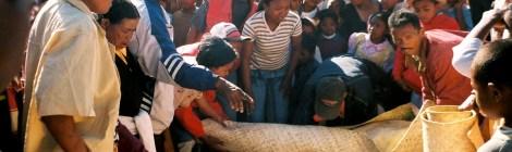 Famadihana - Ombegravningsritualen