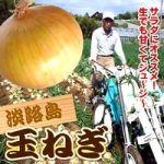 【淡路島】 新玉ねぎの時期や選び方は? フルーツ玉ねぎも人気!!