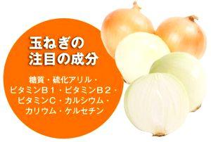 玉ねぎの栄養