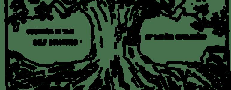 275px-Eugenics_congress_logo
