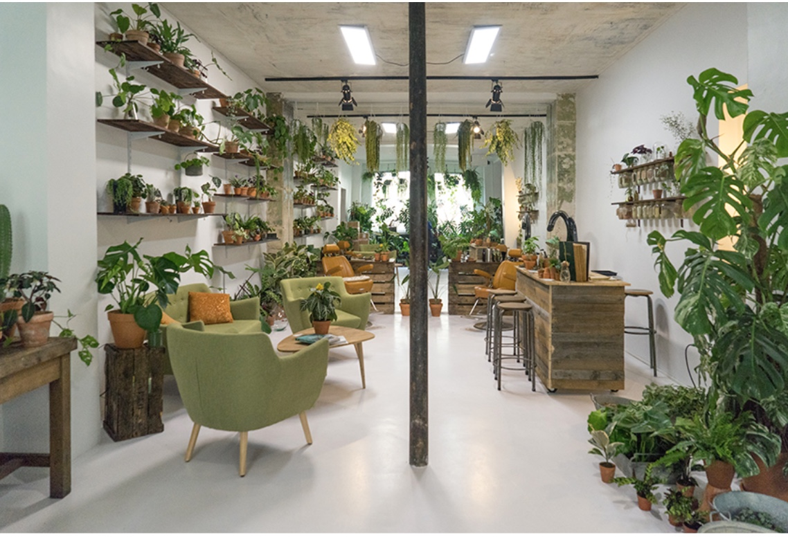 Salon Chic At This Eco Chic Salon In Paris Botany And Beauty Collide