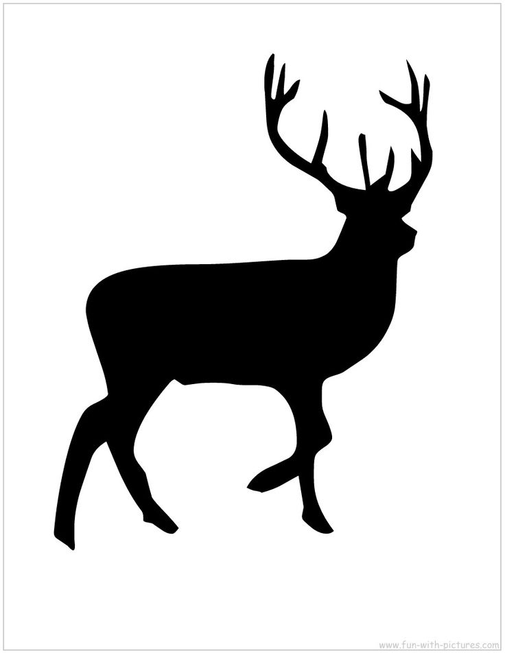 Buck Hunting Transparent  PNG Clipart Free Download - YA-webdesign