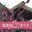 tsukubayama_ume_fes_eyecatch