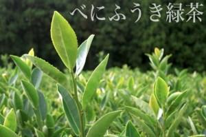 hayfever_tea_004