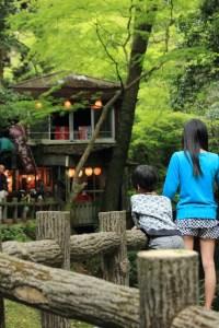 camp_base_kansai_002