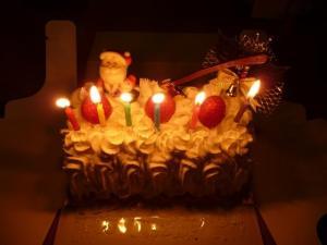 xmas_cake_2015_002