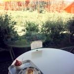 3日目 その5 白樺とプティングケーキとぶどうソフト@富良野の六花亭