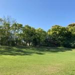 家族で公園へ。今、この時を楽しむ。 #1721