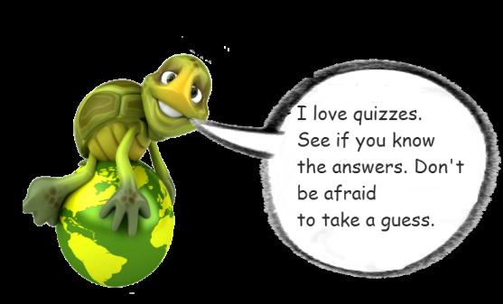 Gulliver Quiz