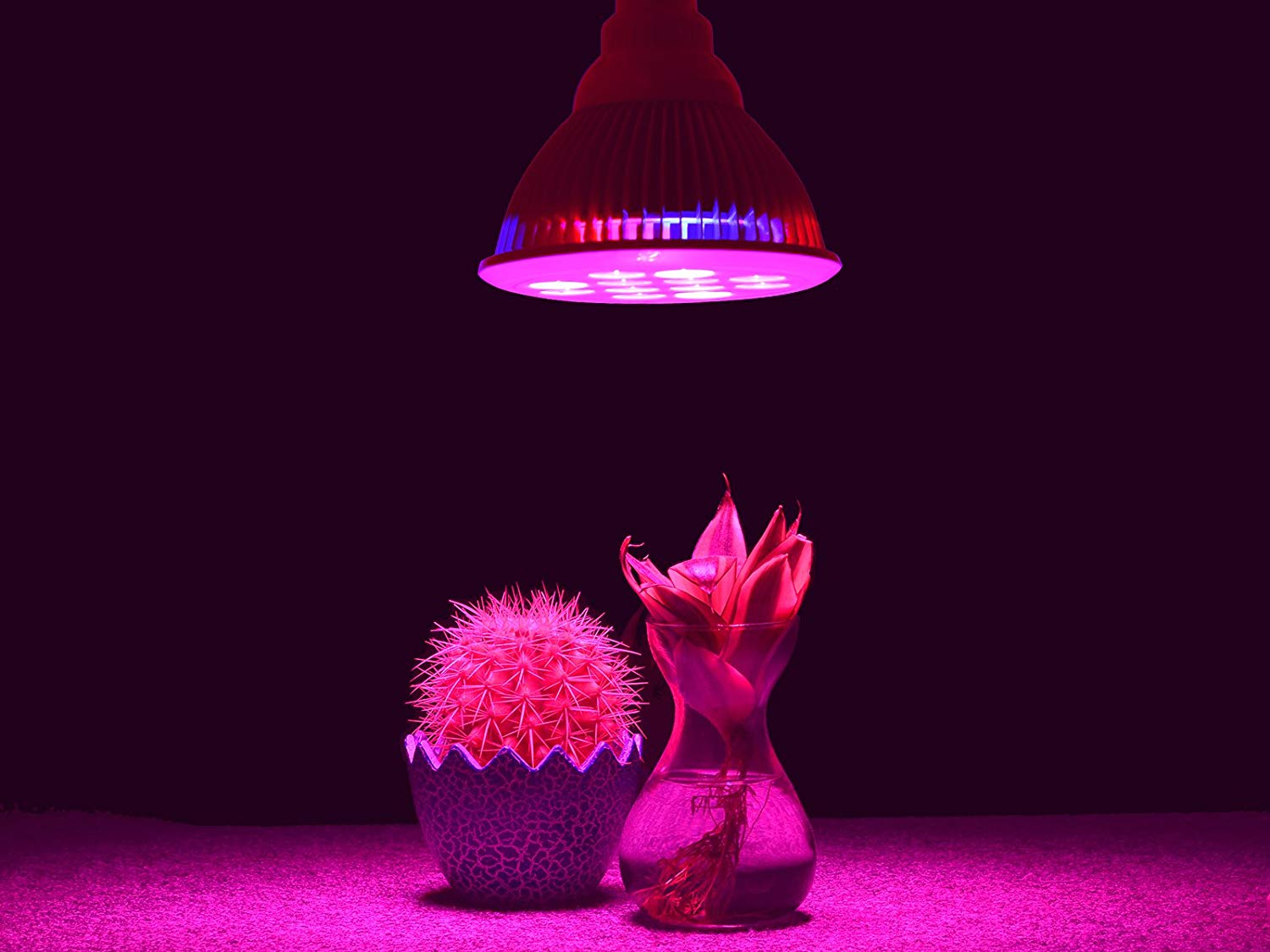 Led Lights Bad Health Are Led Grow Lights Harmful To Humans Yardyum Garden