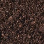 can accept soil