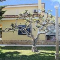 Villa San Juan (MAVA1983-VI-4)