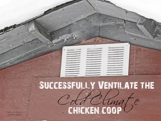 Ventilation For Chickens : How to monday successfully ventilate the cold climate