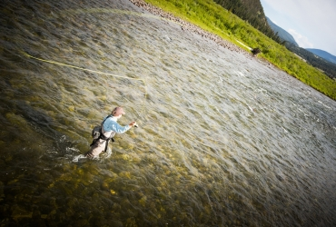 Fly fishing for cutthroat Trout.