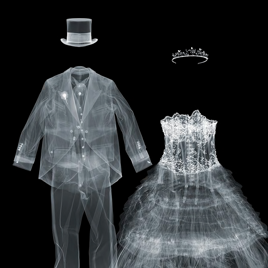 Design Free Thursday // X-Ray Photography by Nick Veasey.