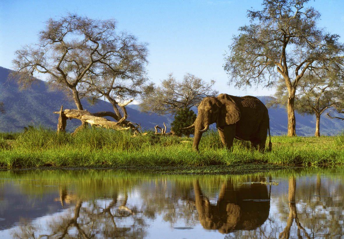 Victoria Falls Hd Wallpaper Zimbabwe Wallpapers High Quality Download Free