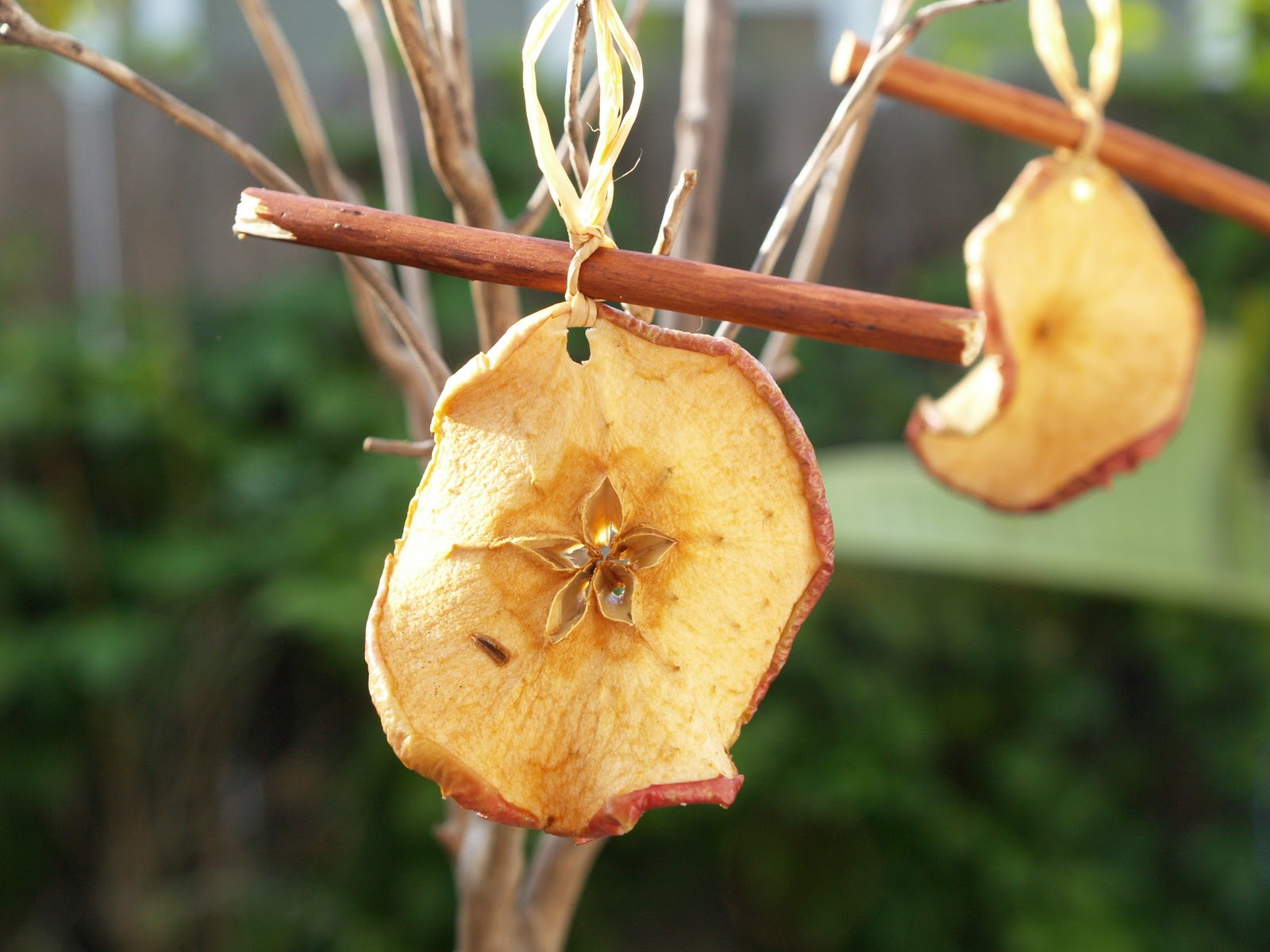 Gedroogde Appels Dried Apples Wallpapers High Quality Download Free