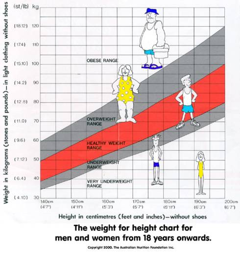 Height and Weight - Height to Weight Chart - Height Weight - Weight