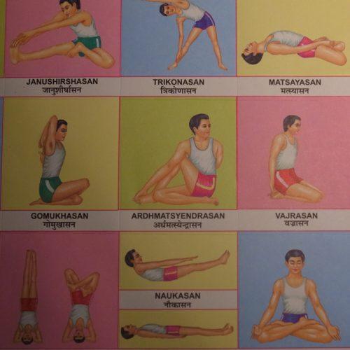 Internationaler Welt Yoga Tag - Wie YOGA die Welt retten kann