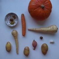 Ayurvedisch vegan: Wintergemüsesuppe