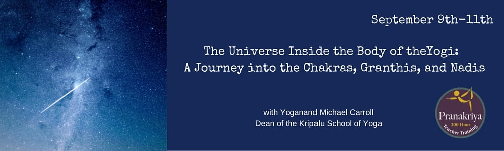The Universe Inside the Body of theYogi- A Journey into the Chakras, Granthis, and Nadis-min