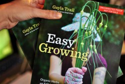 easygrowing_galley