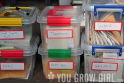 Cheap and Easy Seed Storage