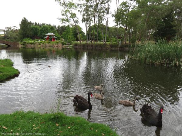 Lambing Flat Tribute Chinese Garden
