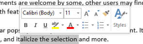 Disable the Mini Toolbar Word 2010 and 2013