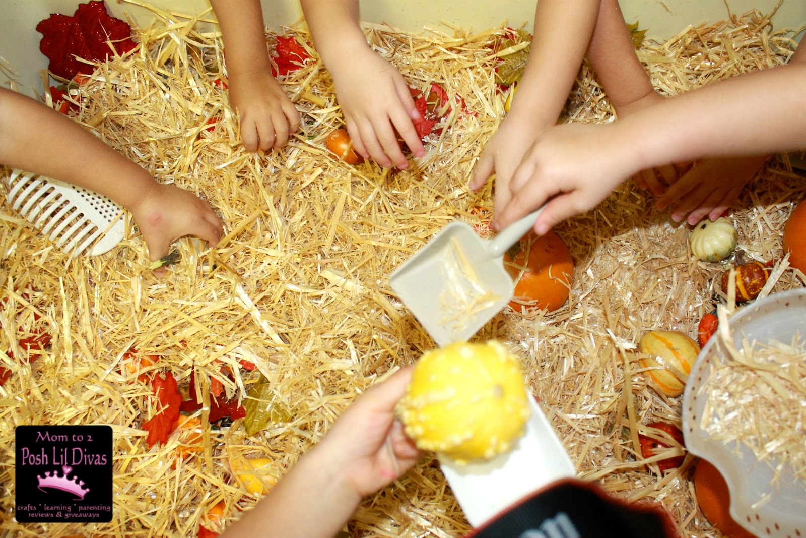 sensory table ideas preschool download