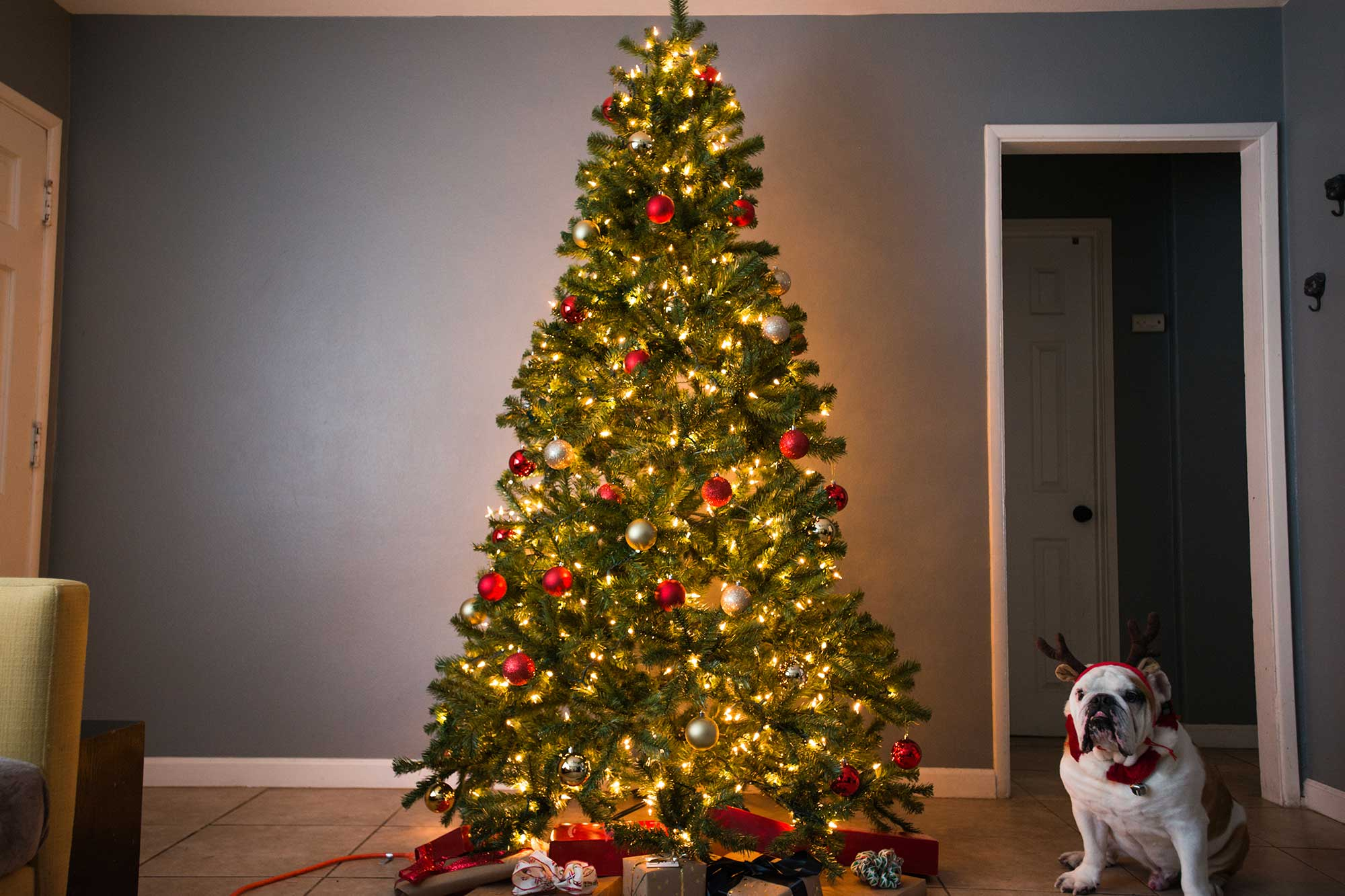 Best Place For Christmas Decorations The Best Artificial Christmas Tree Of 2019 Your Best Digs