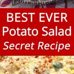 Best Potato Salad Recipe Ever