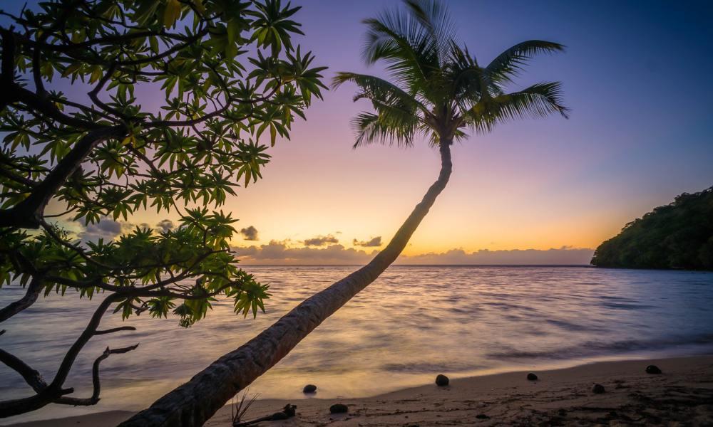 tropische-vakantie